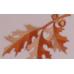 Autumn Oak American Casket - Rosetan Crepe Interior